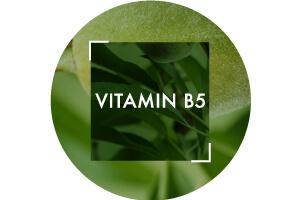 PDP/Vitamin-B5-Vichy-300x200.jpg| Vichy