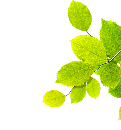 Commitment to Our Planet - Vichy Laboratories