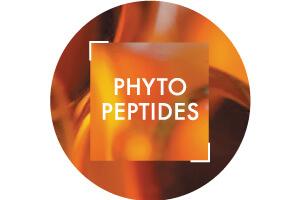 PDP/Phyto-Peptide-Vichy-300x200.jpg| Vichy
